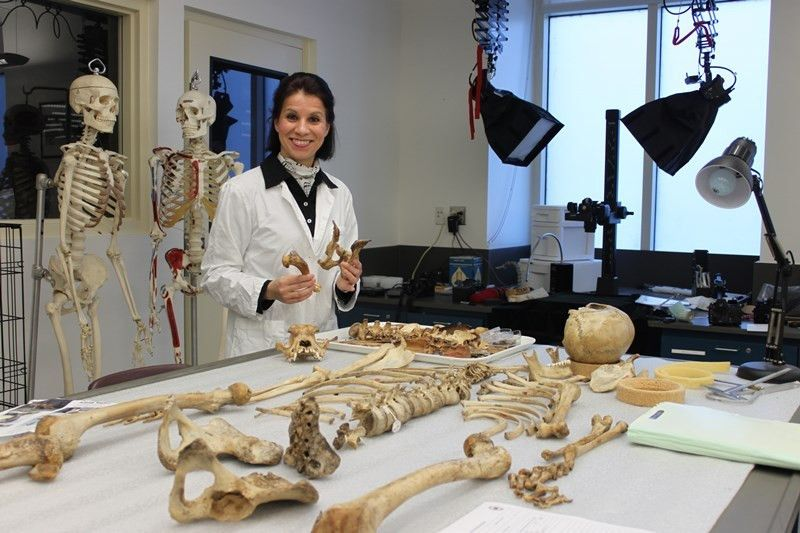 New forensic pathology fellowship fills key gap in veterinary ...