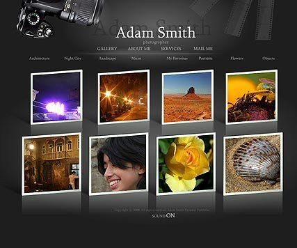 Photographer Gallery Flash Template | Best Website Templates