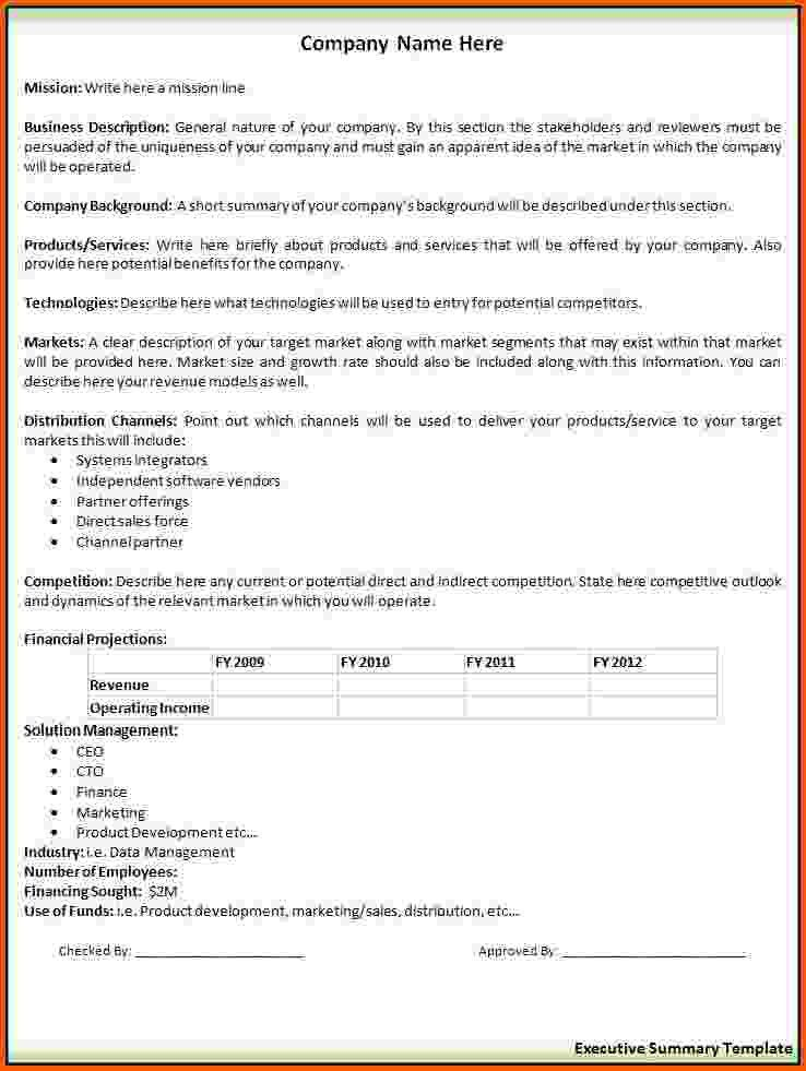 8+ executive summary template word | Survey Template Words