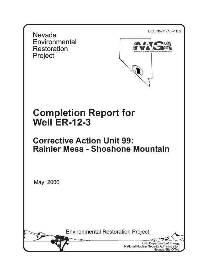 Completion Report for Well ER-12-3 Corrective Action Unit 99 ...