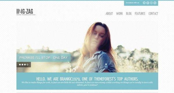 30 Free and Premium HTML/CSS Responsive Website Templates | Ginva
