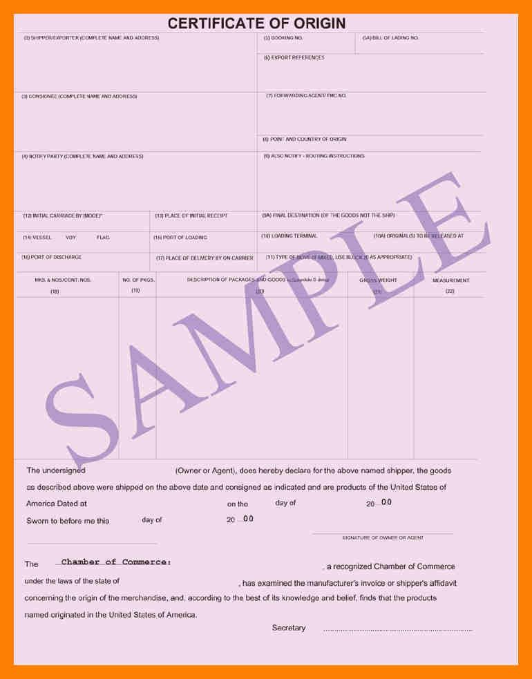 11+ certificate of origin | students resume