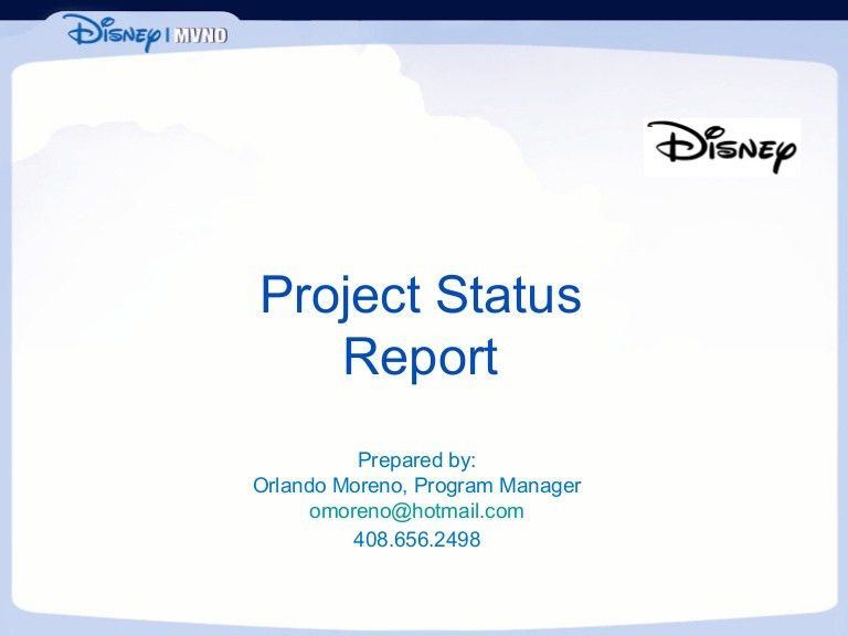 Project Status Report Sample