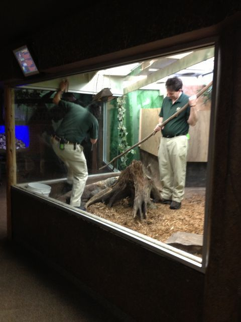 So You Want To Be A Zookeeper | Keeper Blog | John Ball Zoo