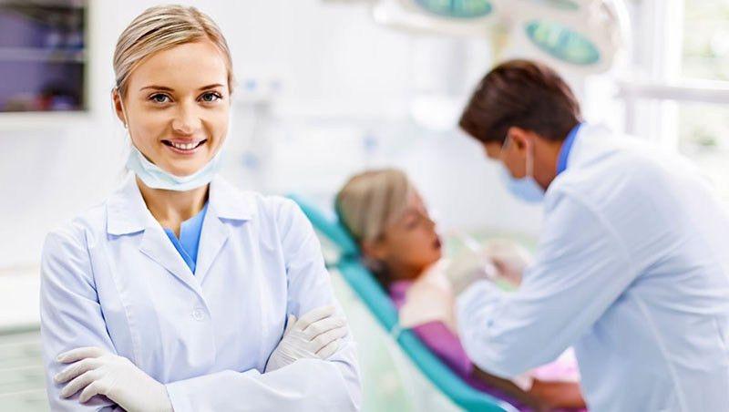 Dentist Resume Sample - Best of Sample Resume