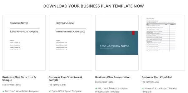Where can I find a sample business plan template for a ...
