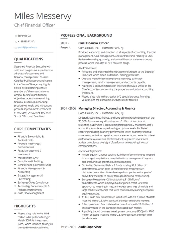 Executive CV examples and template