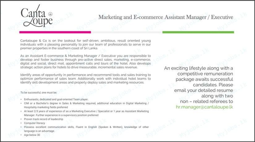 Marketing and E-Commerce Assistant Manager / Executive Jobs in Sri ...