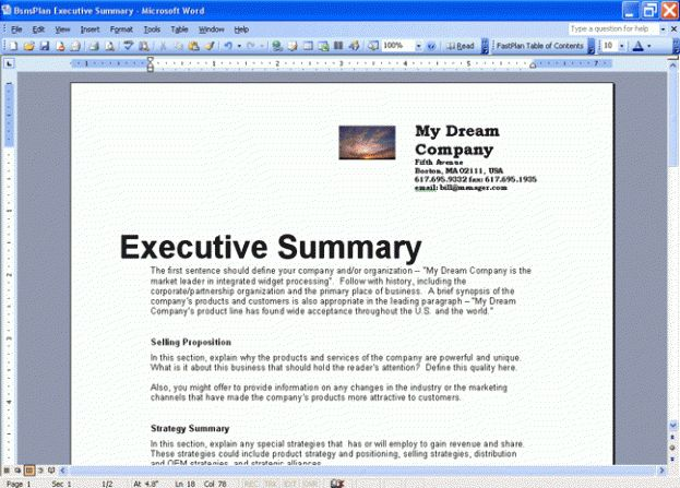 Business Plan Executive Summary : Selimtd