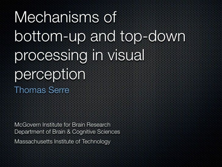 Mechanisms of bottom-up and top-down processing in visual perception