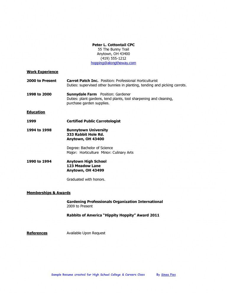 High School Student Resume Examples. Example Of High School ...