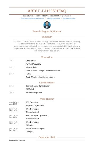 Seo Executive Resume samples - VisualCV resume samples database