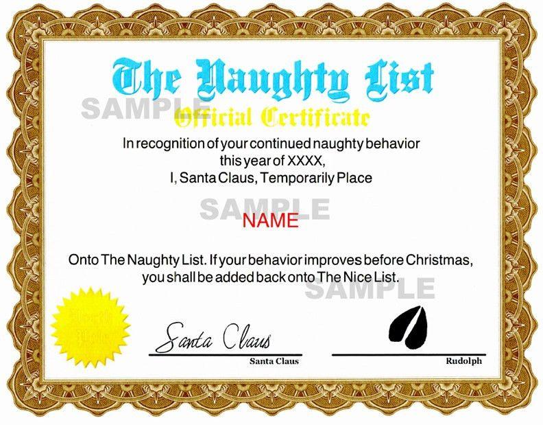 Nice Certificate Templates
