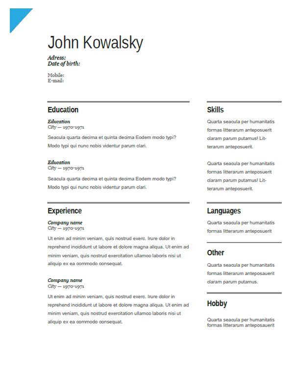 Examples of MBA Resume, web designer, developer, CV and Cover ...