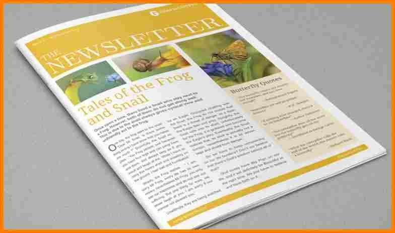 9+ indesign newsletter templates | budget template