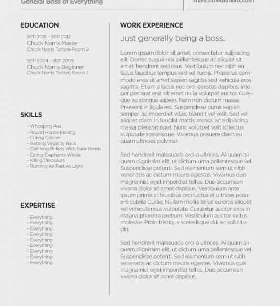 Dazzling Design Resume Template For Mac 11 Pages Resume Templates ...