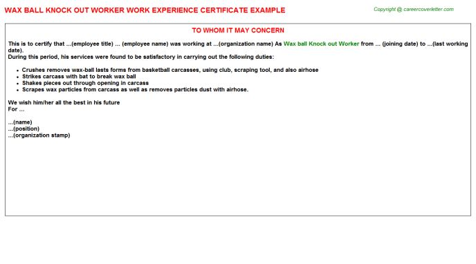Noc Work Experience Letters