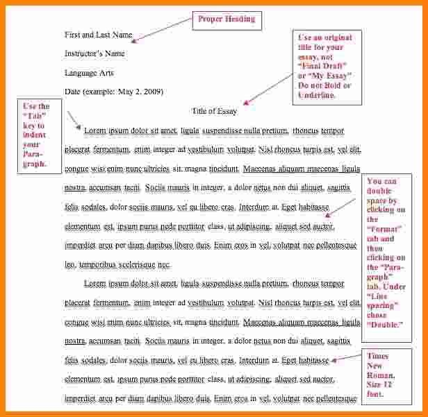 8 how to write mla format | ledger paper