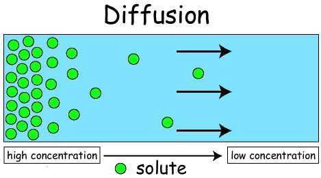 Is Your Life One of Passive Diffusion or Active Transport ...