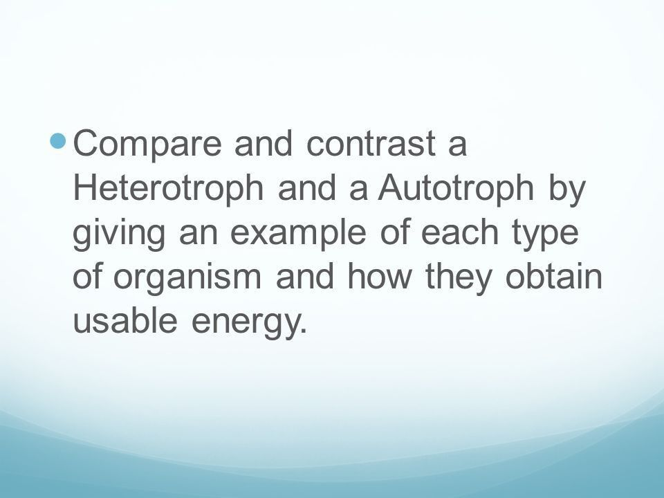 ECOLOGY DO-NOWS. Compare and contrast a Heterotroph and a ...