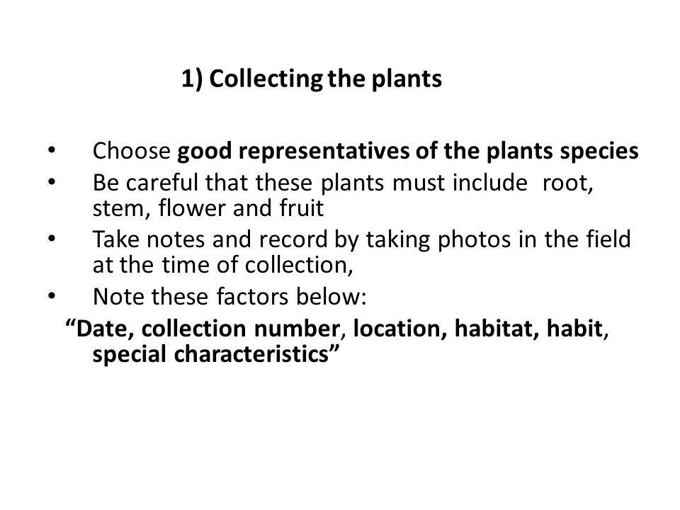 LAB 2 Collection and Preservation of Plant materials and Herbarium ...