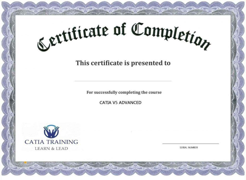 Certificate Of Training Completion Template - Template Update234 ...