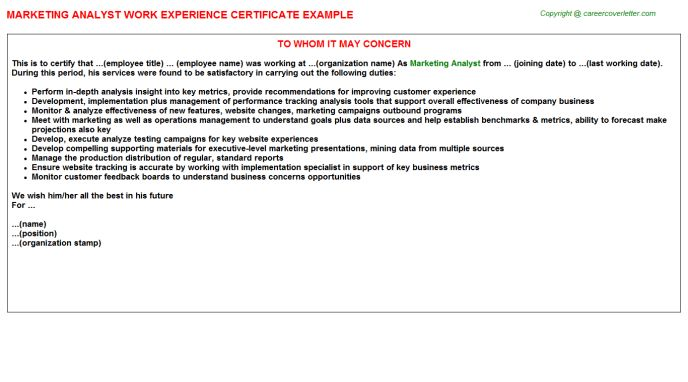 Marketing Analyst Work Experience Certificate