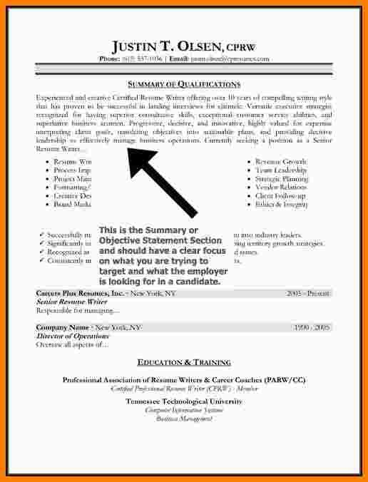 8+ resume profile statement | Statement Information