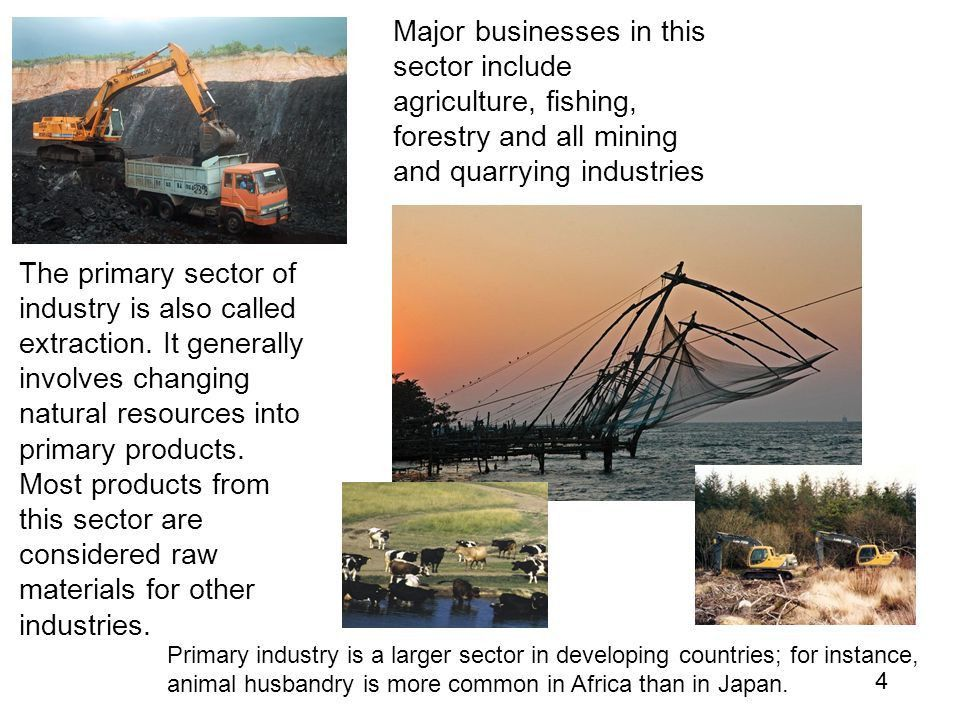 SECTORS OF INDUSTRY. - ppt video online download