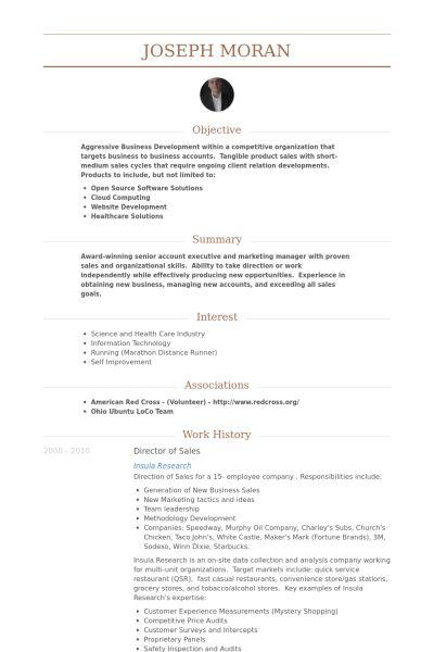 Director Of Sales Resume samples - VisualCV resume samples database