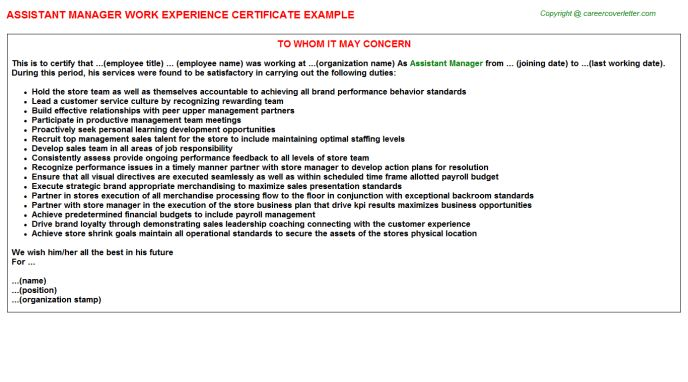 Assistant Manager Work Experience Letters
