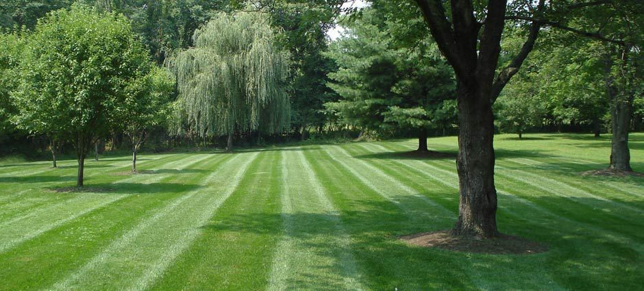 Moberly Mo. Lawn Care Service, - Providing lawn mowing and ...