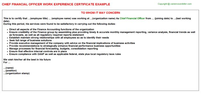 Chief Financial Officer Work Experience Certificate