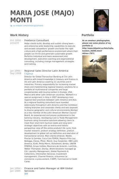 Freelance Consultant Resume samples - VisualCV resume samples database