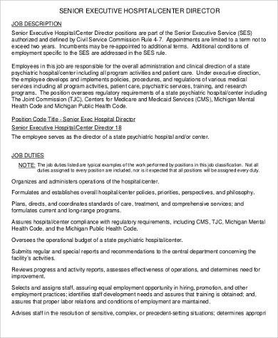 Senior Director Job Description Sample - 9+ Examples in PDF