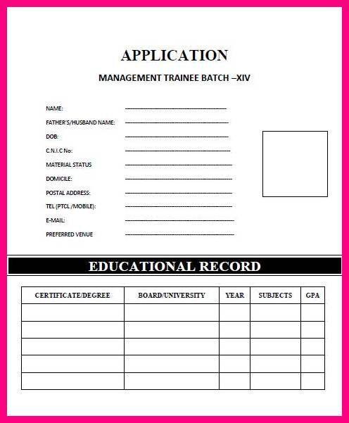 11 Application Form Format