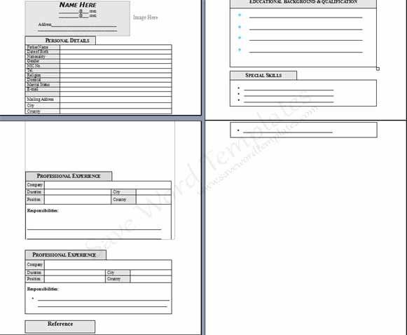 Blank CV Format