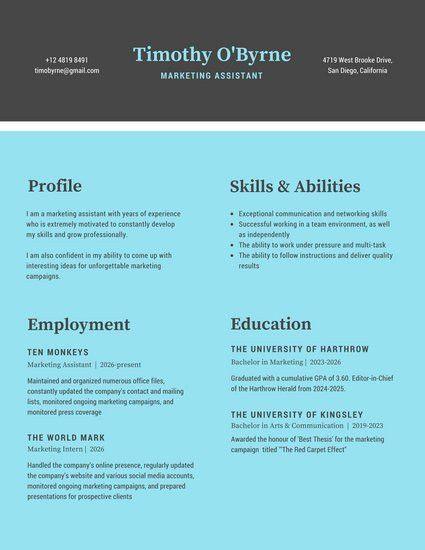 Corporate Resume Templates - Canva