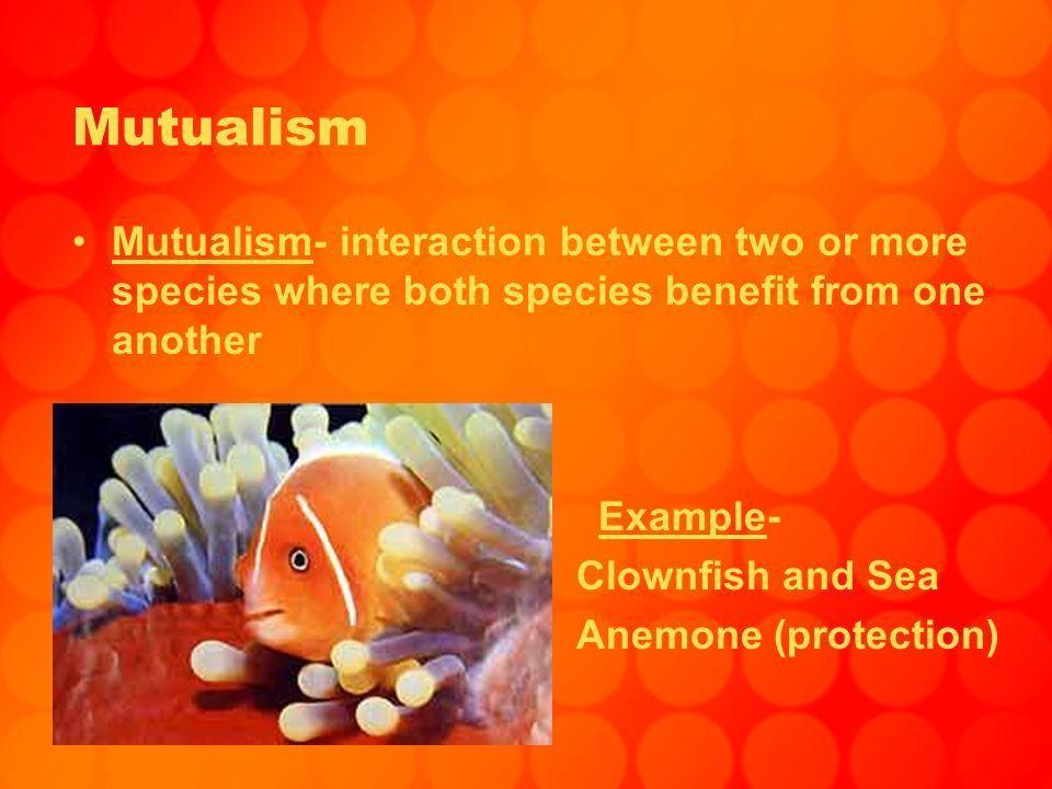 Mutualism, Parasitism, Commensalism. Mutualism Mutualism ...