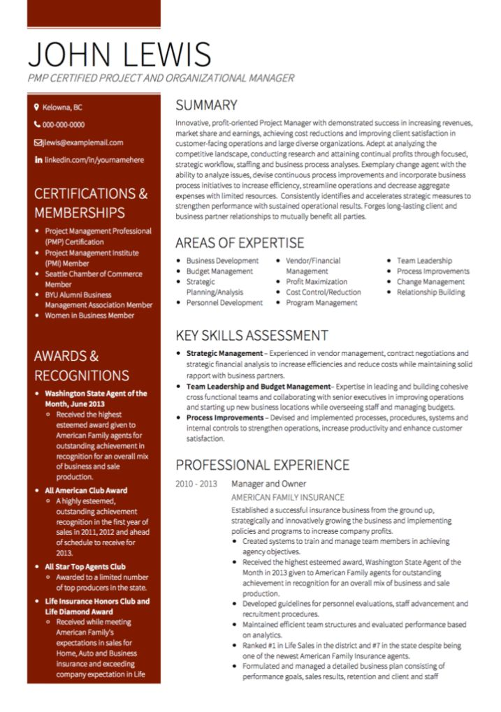 Management CV examples and template