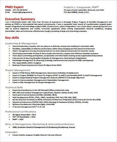 Executive Summary Resume. Executive-Summary-Resume-About-Sarmiento ...