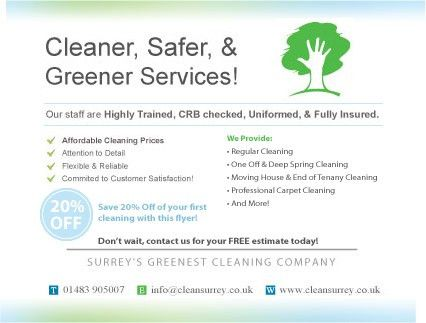 review my flyer/postcard for cleaning business - Webmaster Forum