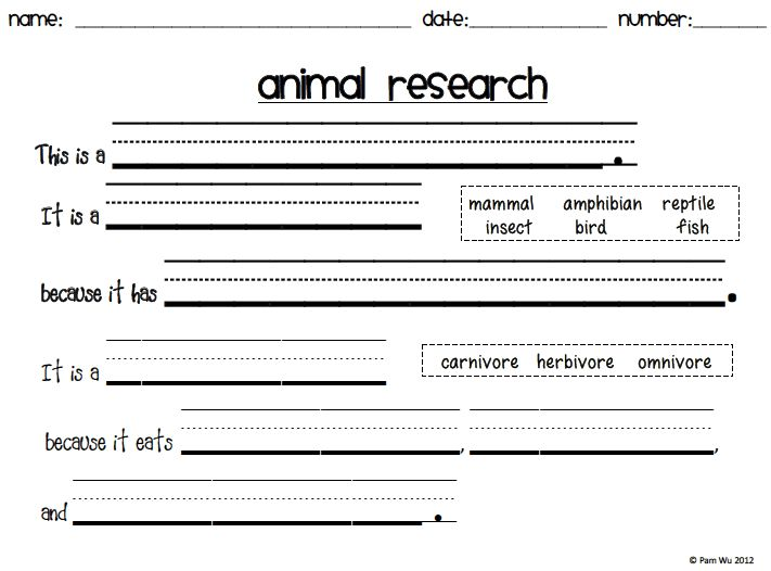 Diary Of A First Grade Teacher: New Product   Animal Report/Book .