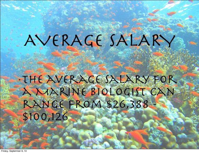 Spanish 1 marine biologist