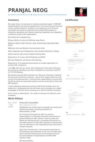 Financial Consultant Resume samples - VisualCV resume samples database