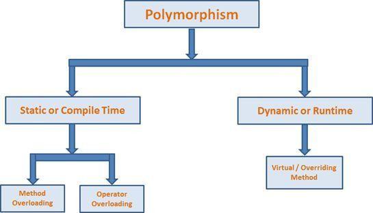 Understanding Polymorphism in C#
