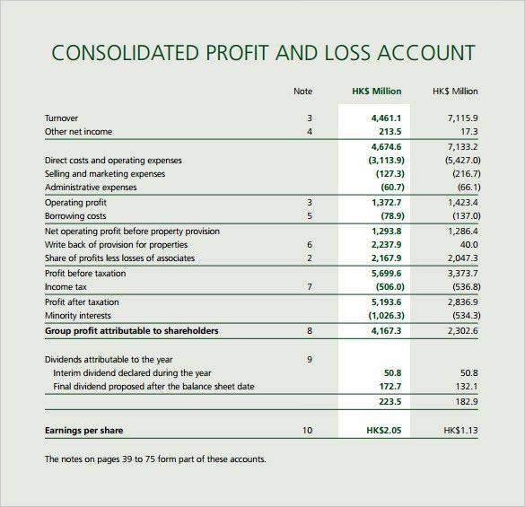Profit and Loss Statement Sample - 9+ Examples in PDF, Excel