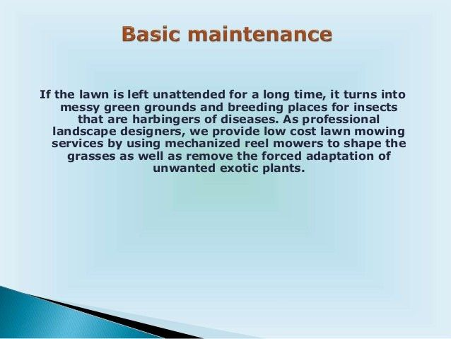 Lawn and Garden Care Service