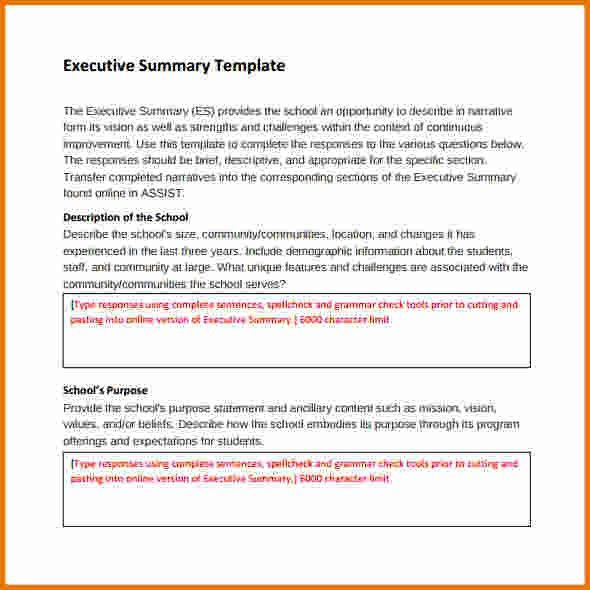 8+ Executive Report Template | Expense Report