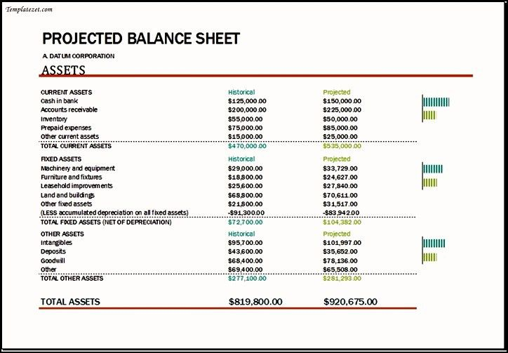 Projected Balance Sheet Template Excel   TemplateZet